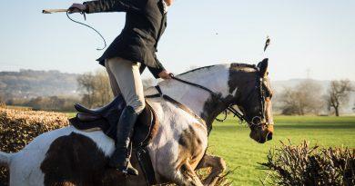 Sklep jeździecki: przygotowanie do pierwszej lekcji